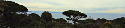 Saint Tropez Les Parcs - Propriété - Succession